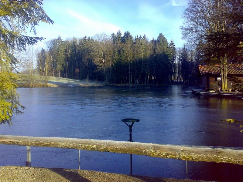 Schaberer_Winter
